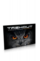 Fronton-TG_Trehout_1